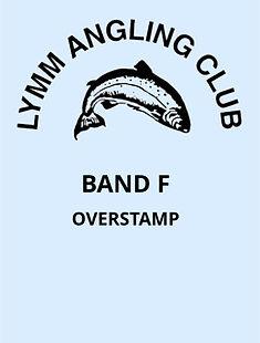 V5 Band F - Overstamp.jpg