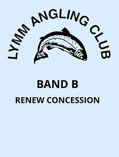 V5 Band B - Renew Concession.jpg