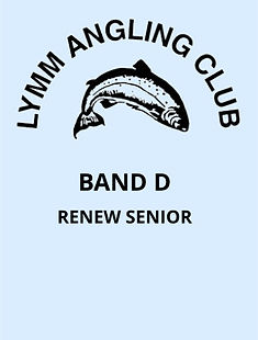 V5 Band D - Renew Senior.jpg