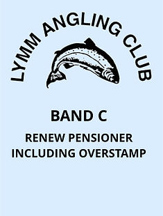 V5 Band C - Renew Pensioner Inc Overstam