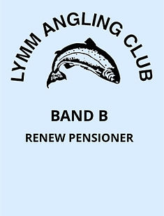 V5 Band B - Renew Pensioner.jpg