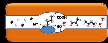 Nanoconfinement_Logo.png