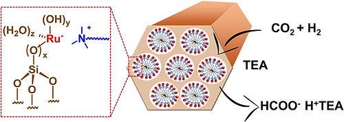 applcatalb micelles.jpg