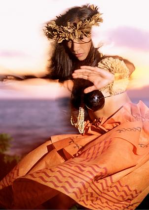 hawaii dancer.png