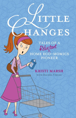 Little Changes Book Cover
