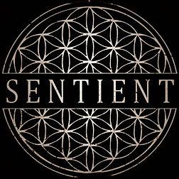 sentient logo1.jpg