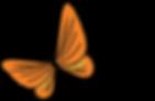 JBF_logo_ntag_RGB.png