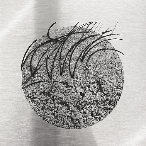 Venus - silver