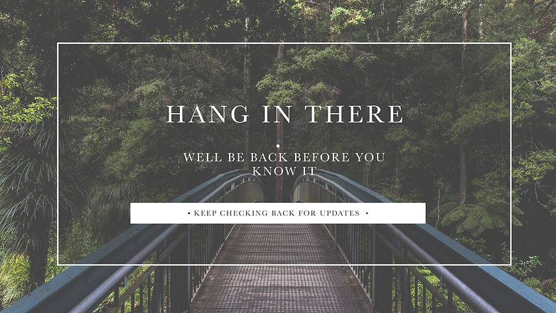 hang in there poster .jpg