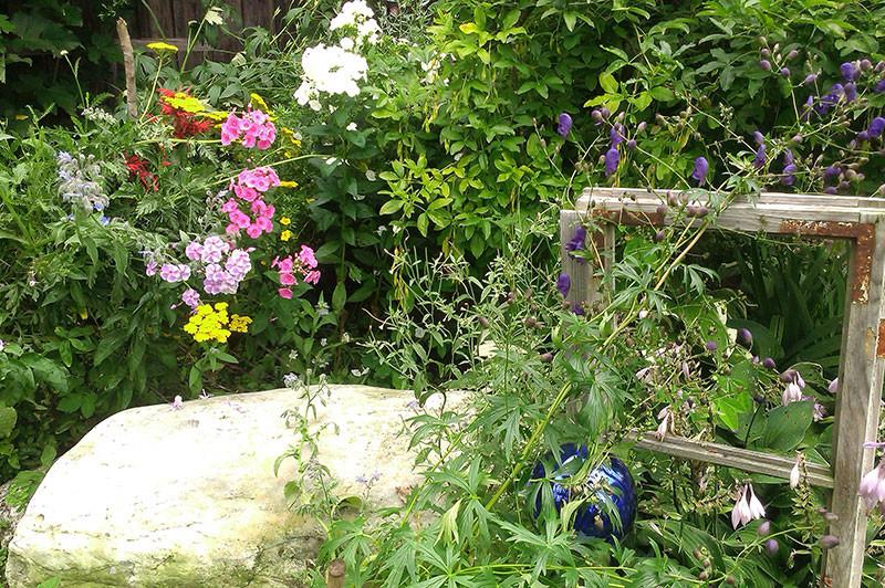 Garten Urlaub im Stall