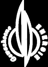 Logo_Nachbau_outline_soft.png