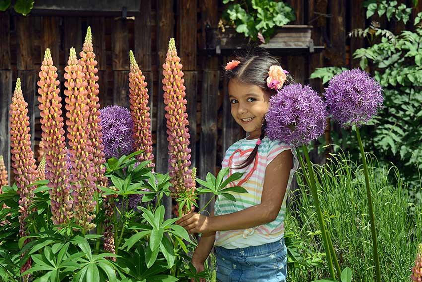 Blumenkind Urlaub im Stall