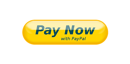 Paypal BUTON.png