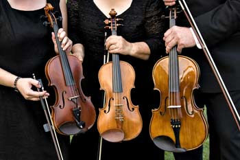 Two Violins and Viola.jpg