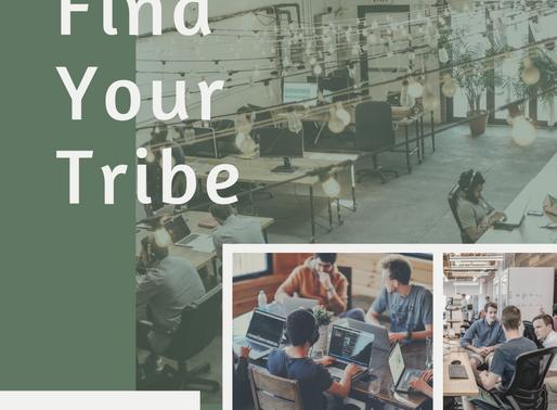 Sneak Peek: Sacramento Freelance Network (SFN)
