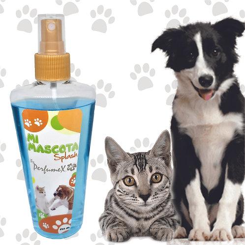 Mi Ternura - Perros y Gatos