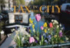 KanPiek Fisale Advocatuur Amsterdam | Tax in the City Spring Sessie