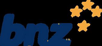 bnz bank.png