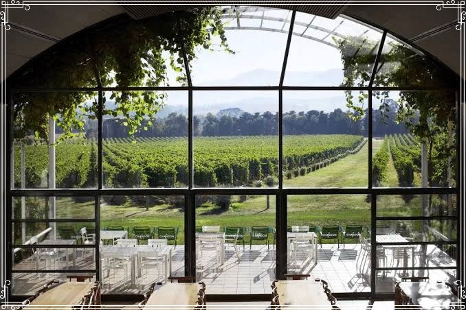 Full Day Yarra Valley Wine Experience