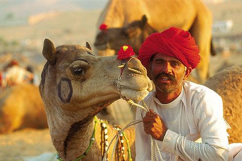 Mystic Desert India