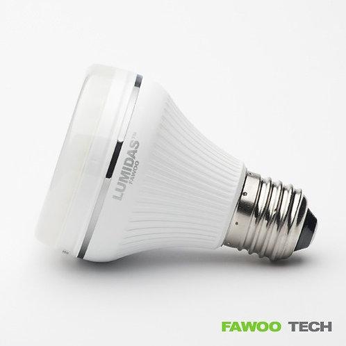 LED žárovka LumiDas-DL06, E27, teplá bílá
