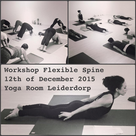 Flexible Spine Workshop at Yoga Room Leiderdorp