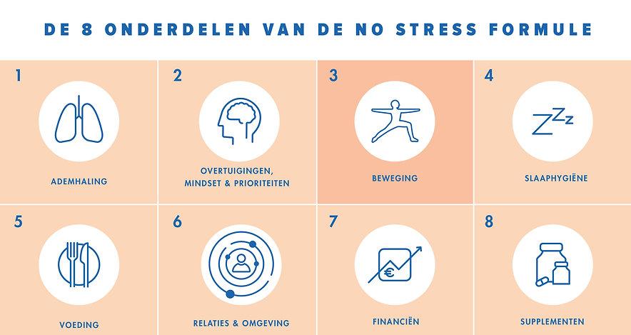Beweging overzicht 8 onderdelen No Stres