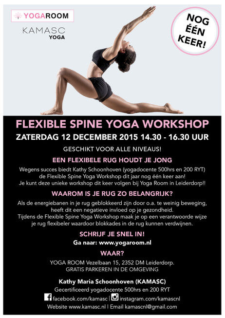 Workshop 12 Dec. Flexible Spine