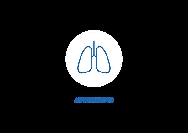 Ademhaling adem.png