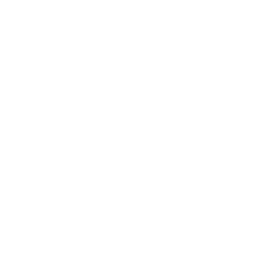 03_Logo_graphic.png