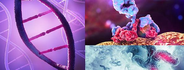 Applied-Genomics-Main-Image-1310-500.jpg
