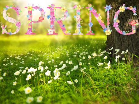 Spring Cleansing for the Mind, Body, and Soul