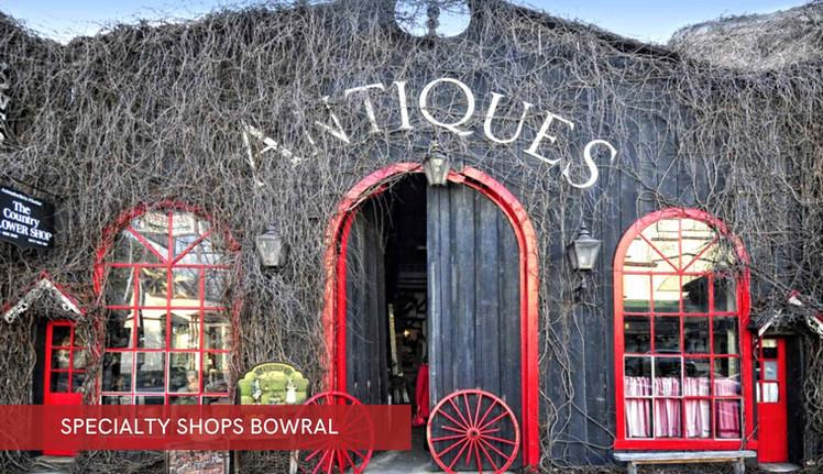 Specialty Shops.jpg