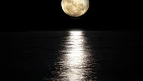 ★ 67 - Pleine Lune en Poissons