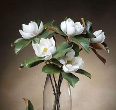 Magnolia%20-%20Small%20Bloom%20Silk%20Flower%20Stem_edited.jpg