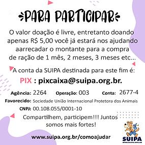 suipa 3-03.png