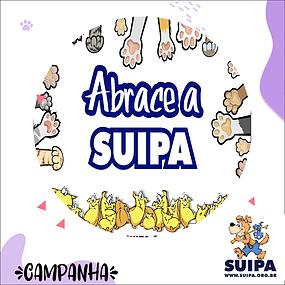 suipa 1_Prancheta 1.png