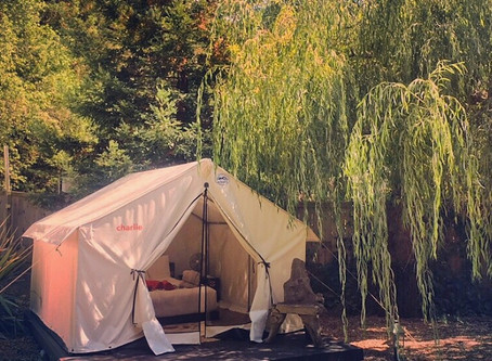 THE CAMP AT BOON (GUERNEVILLE)