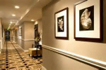 Hotel painting and decor