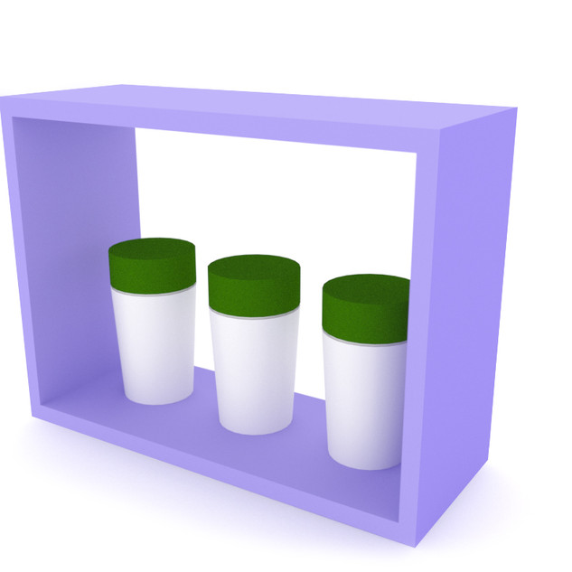 Product Display Box.jpg