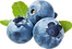 commodity-blueberry.png