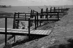 614-paysages.JPG