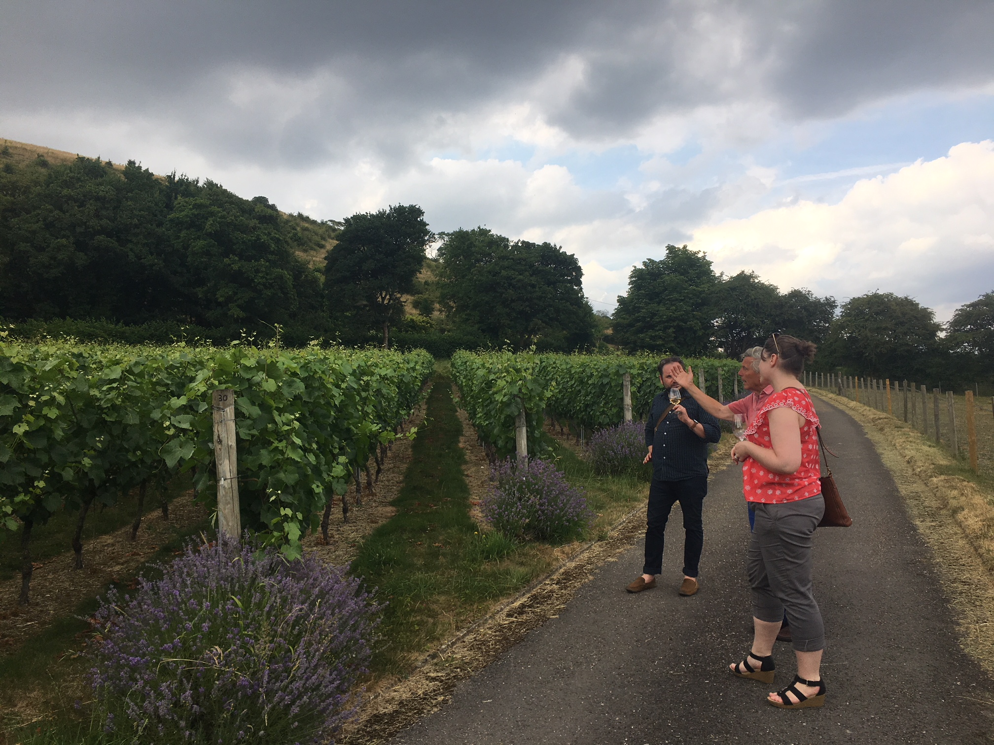 hampshire-wine-tours