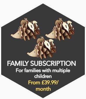 Family Subscription Box