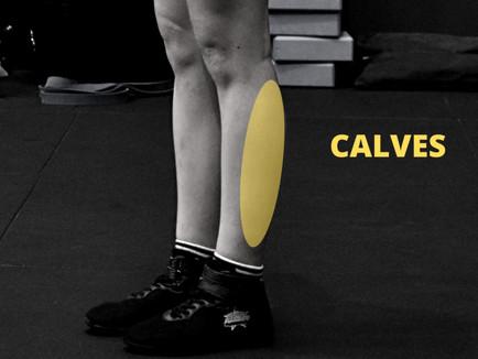 Calves 🦵 Anatomy Focus