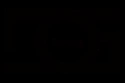 havedog-logo