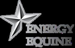 Energy-equine