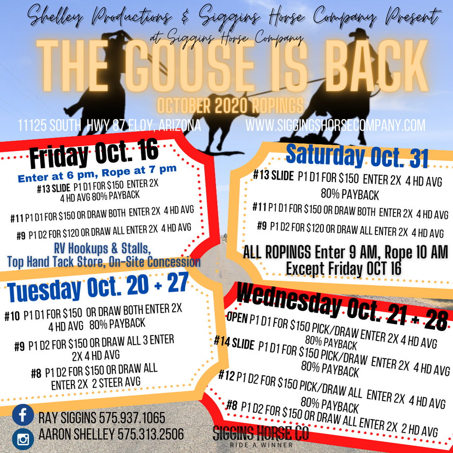 Copy of The Goose is back Oct.png