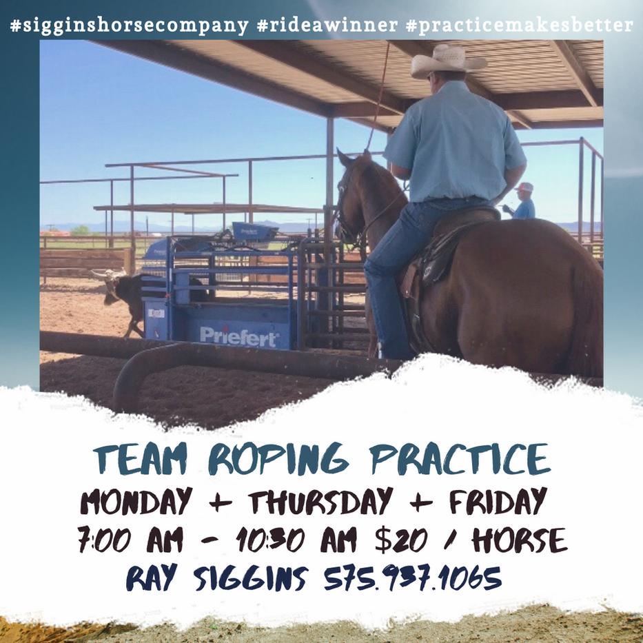 Team Roping Practice Fall.png