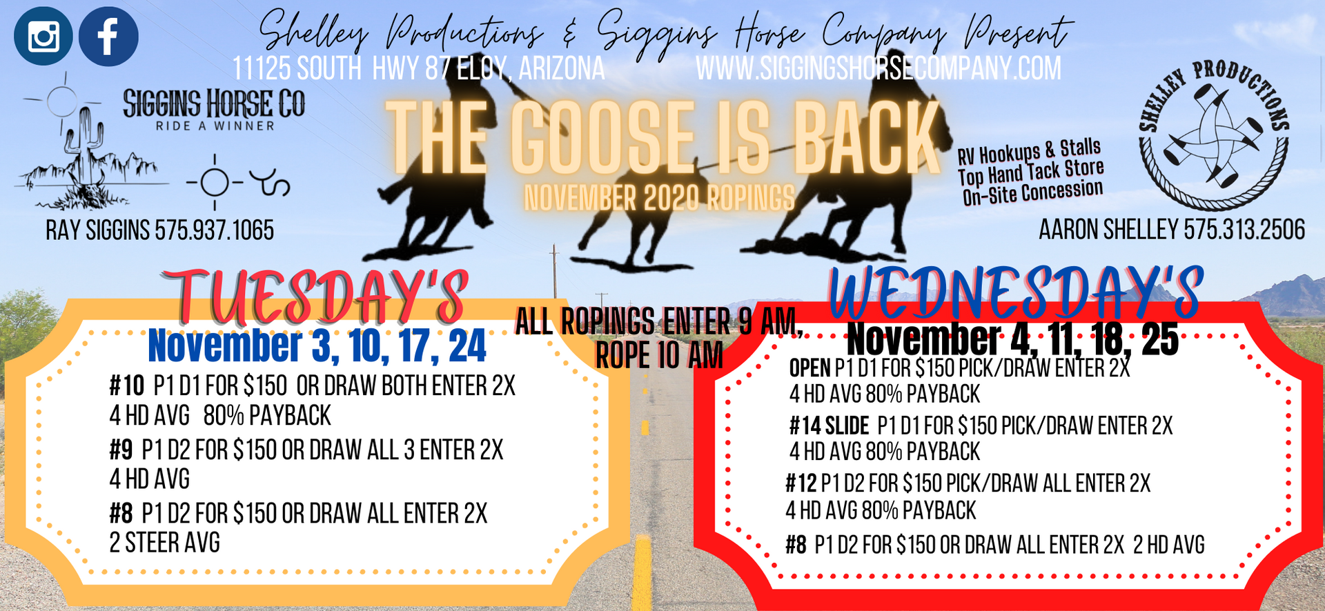 Copy of The Goose is back jackpot mag (1